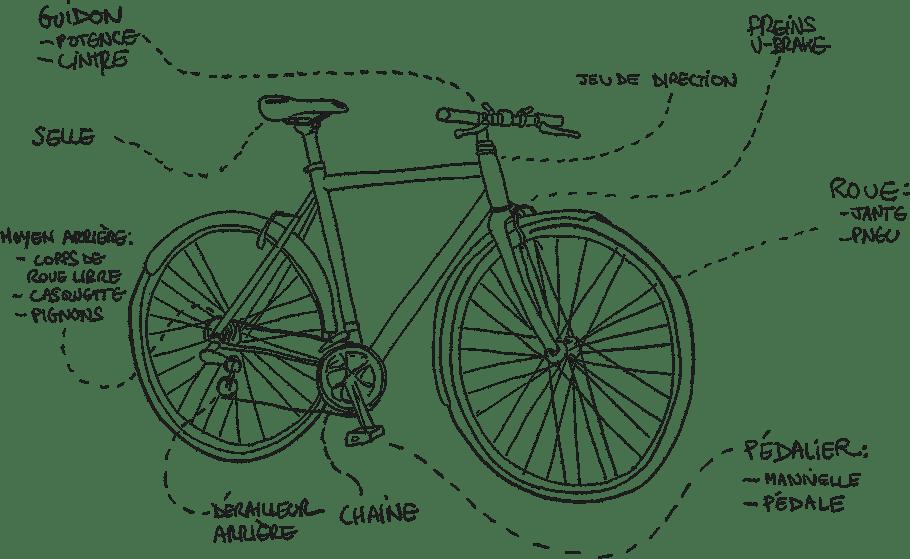 Les composants du vélo