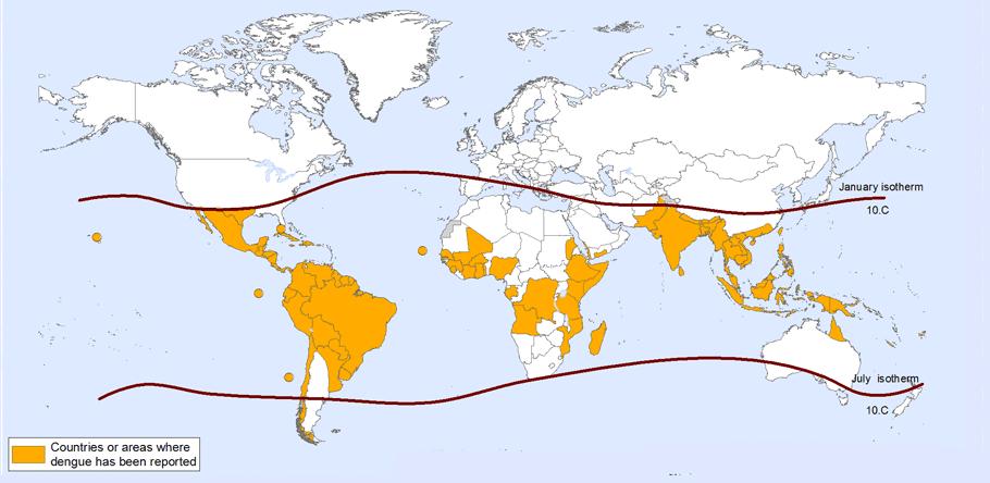 Carte cas reportés de dengue OMS 2013