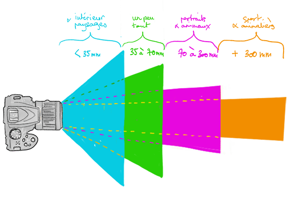 Shéma Focale Reflexes