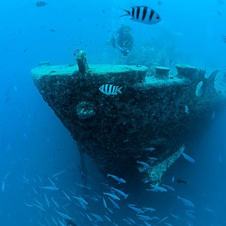 L'épave du Thistlegorm, une plongée mythique